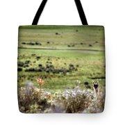 Environmental Tierra Del Fuego -- Tote Bag