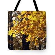 Fall Yellow Tote Bag