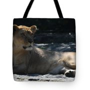 Female Lion Tote Bag