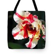 Flaming Parrot Tulip Tote Bag