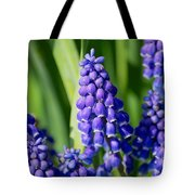 Grape Hyacinth Tote Bag