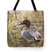 Greenwing Teal Tote Bag