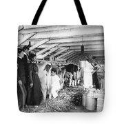 Hampton Institute, C1900 Tote Bag