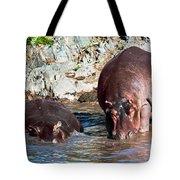 Hippopotamus In River. Serengeti. Tanzania Tote Bag