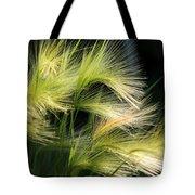 Hordeum Jubatum Grass Tote Bag