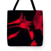 Human Fibroblasts Tote Bag