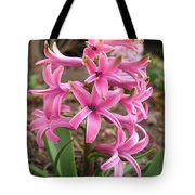 Hyacinth Named Pink Pearl Tote Bag