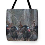 Jake Eastern Wild Turkeys Tote Bag