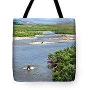 4-lay Of The Land Many Grizzly Bears In Moraine River In Katmai National Tote Bag