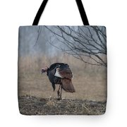 Male Eastern Wild Turkey Tote Bag