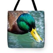 Mallard Drake Tote Bag