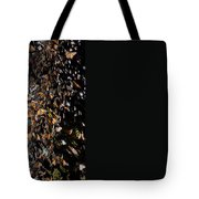 Monarch Butterflies Tote Bag