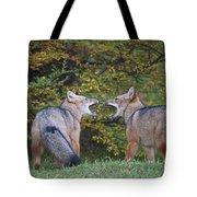 Patagonian Red Fox Tote Bag