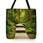 Path In Temperate Rainforest Tote Bag