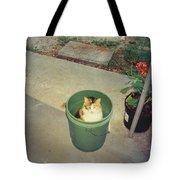 Petey Tote Bag