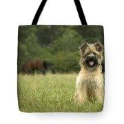 Pyrenean Sheepdog Tote Bag