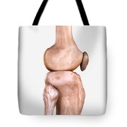 Right Knee Bones Tote Bag