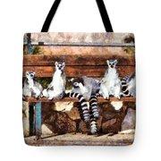 Ring Tailed Lemurs Tote Bag