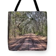 Road To Angel Oak Tote Bag