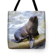 Sea Lion Tote Bag by Alexey Stiop