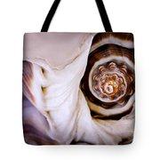 Seashell Detail Tote Bag by Elena Elisseeva
