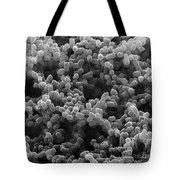 Sem Of Escherichia Coli Tote Bag