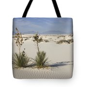 Soaptree Yucca In Gypsum Sand White Tote Bag