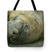 Southern Elephant Seal Tote Bag