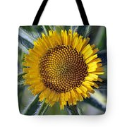 Spring Wild Flower Tote Bag