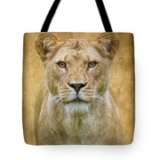 Stare Down Tote Bag