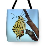 Stock Images Of Galicia Tote Bag