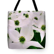 Summer 2013 Tote Bag