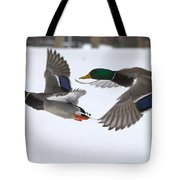 The Great Race Tote Bag