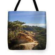 Torrey Pines State Park - California Tote Bag
