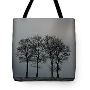 4 Trees In A Winters Landscape Tote Bag