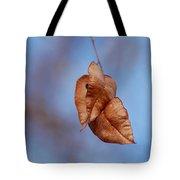 #withinmealunaticsings Tote Bag