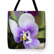 Viola Named Sorbet Marina Baby Face Tote Bag by J McCombie