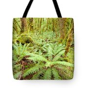 Virgin Rainforest Wilderness Of Fiordland Np Nz Tote Bag
