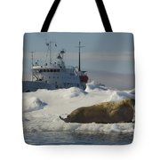 Walrus Resting On Ice Floe Tote Bag