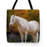 White Horse In Autumn Tote Bag