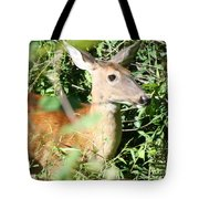 White Tailed Deer Portrait Tote Bag