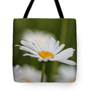 Wildflower Named Oxeye Daisy Tote Bag