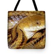 Yellow Rat Snake Tote Bag