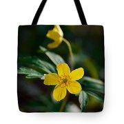 Yellow Wood Anemone Tote Bag