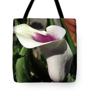 Zantedeschia Named Picasso Tote Bag