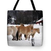 40104-5 Norwegian Horses Tote Bag