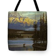 4028a, Evening Skyline, Montreal, Qc Tote Bag