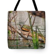 42- Florida Red-bellied Turtle Tote Bag