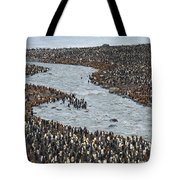 King Penguins Tote Bag