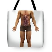 The Digestive System Tote Bag